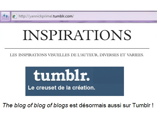 My gallery of inspirations is now on Tumblr.   C'mon here !